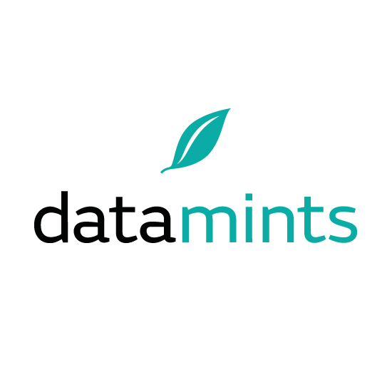 datamints GmbH