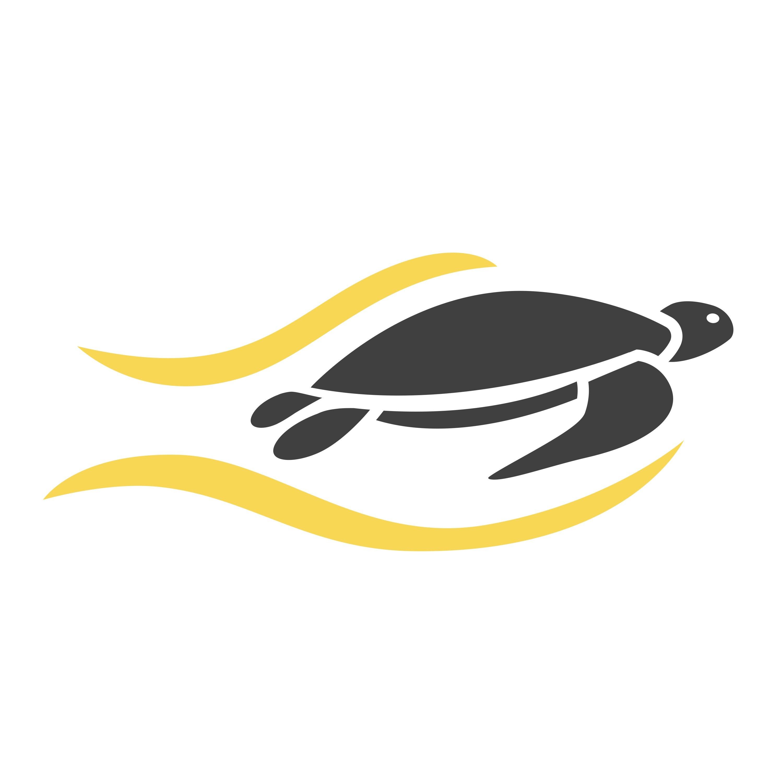 SEO-Turtles - Die SEO Agentur