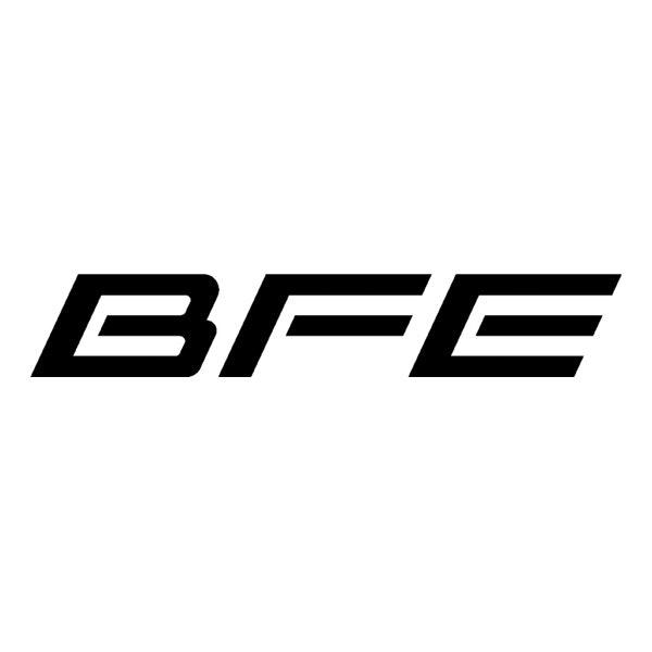 BFE Studio und Medien Systeme GmbH