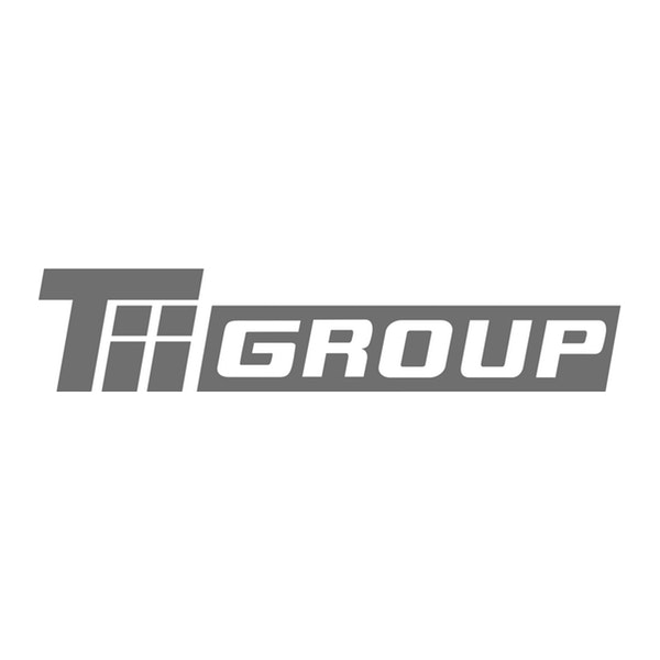 TII SALES Transporter Industry International Sales GmbH & Co. KG