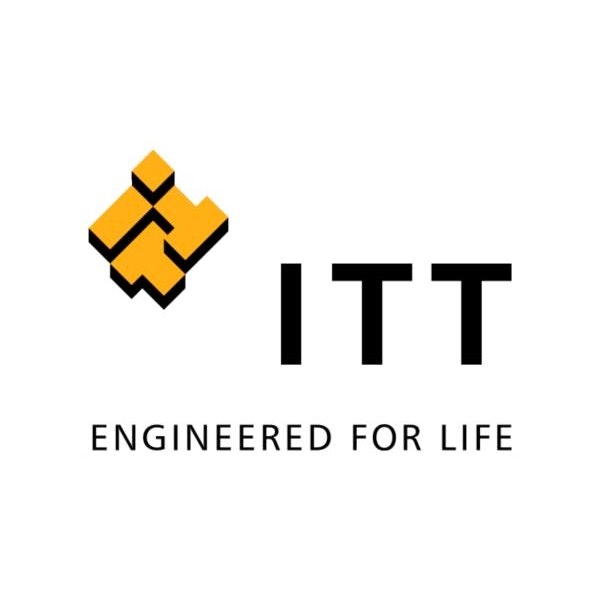 IT Manager (m/f)