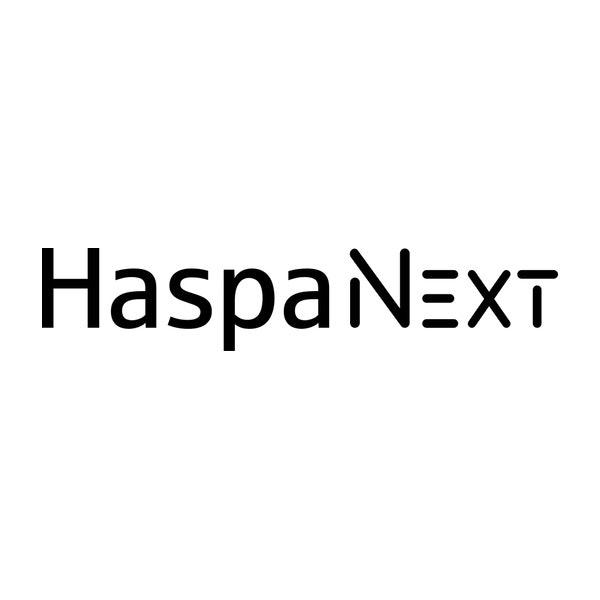Haspa Next GmbH